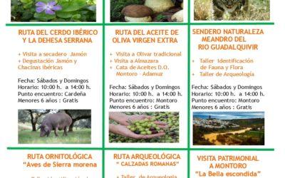 Agenda Eco-Turismo Lynxaia para el mes de Febrero